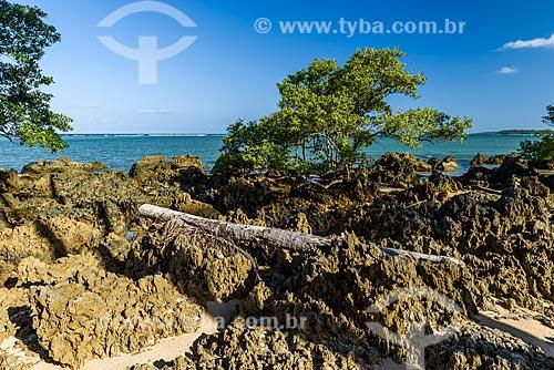 Rochedos na orla da Praia de Moreré  - Cairu - Bahia (BA) - Brasil