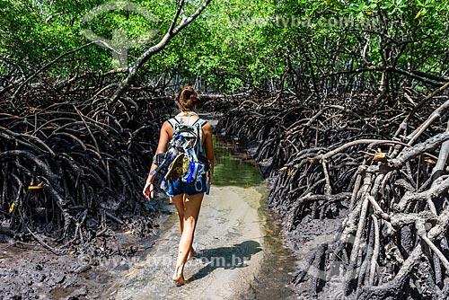 Manguezal entre a Ponta dos Castelhanos e Praia de Bainema  - Cairu - Bahia (BA) - Brasil