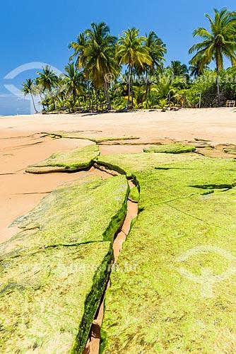 Orla da Praia da Bombaça  - Maraú - Bahia (BA) - Brasil