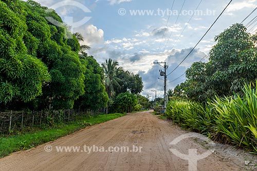 Estrada de Terra na Vila de Barra Grande  - Maraú - Bahia (BA) - Brasil