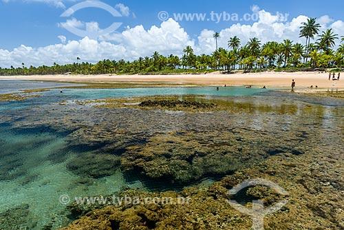 Piscinas naturais da Praia de taipús de fora  - Maraú - Bahia (BA) - Brasil