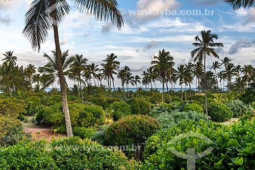 Vista da vegetação com a Praia do Cassange ao fundo  - Maraú - Bahia (BA) - Brasil