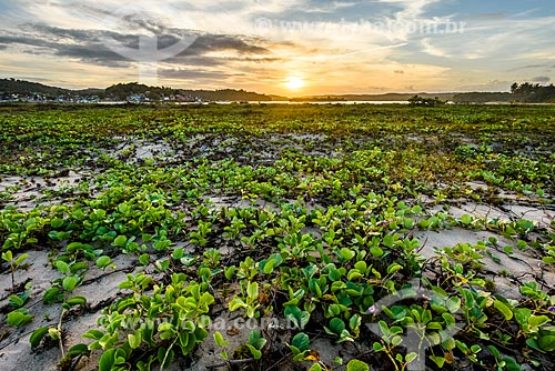Orla da Praia do Pontal durante o pôr do sol  - Itacaré - Bahia (BA) - Brasil