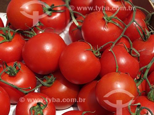 Tomate-holandês à venda no Albert Cuyp Markt  - Amsterdam - Holanda do Norte - Holanda