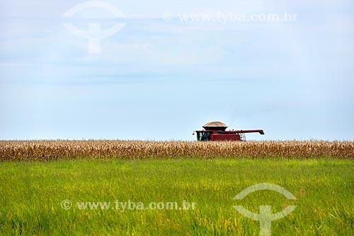 Colheita de milho  - Planaltina - Goiás (GO) - Brasil