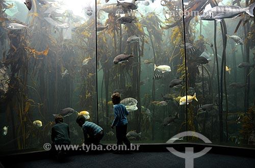 Crianças observando peixes na galeria Kelp Forest Exhibit no Two Oceans Aquarium (Aquário Dois Oceanos)  - Cidade do Cabo - Província do Cabo Ocidental - África do Sul
