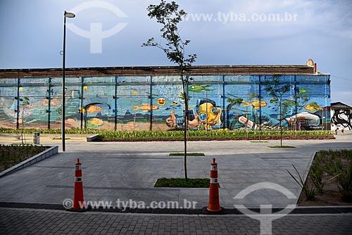 Grafite nos armazéns do Cais da Gamboa - Porto do Rio de Janeiro - na Orla Prefeito Luiz Paulo Conde  - Rio de Janeiro - Rio de Janeiro (RJ) - Brasil