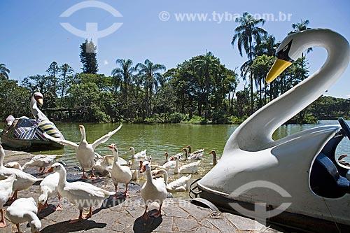 Ganso e pedalinho às margens do Lago de São Lourenço no Parque das Águas São Lourenço  - São Lourenço - Minas Gerais (MG) - Brasil
