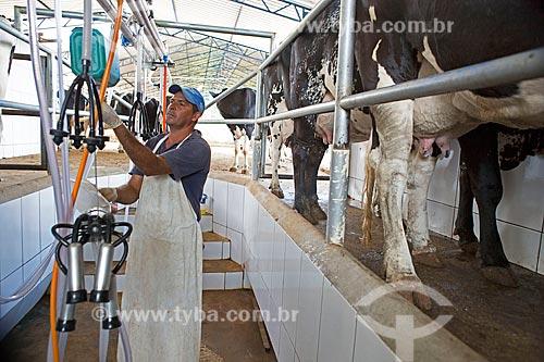 Detalhe de ordenha mecanizada de Gado Holstein-Frísia - também conhecido como Gado Holandês - na Fazenda Serra Azul  - Carmo de Minas - Minas Gerais (MG) - Brasil