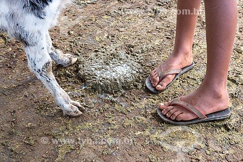Detalhe da pata de bezerro e pés de menino em meio ao esterco na Fazenda Serra Azul  - Carmo de Minas - Minas Gerais (MG) - Brasil