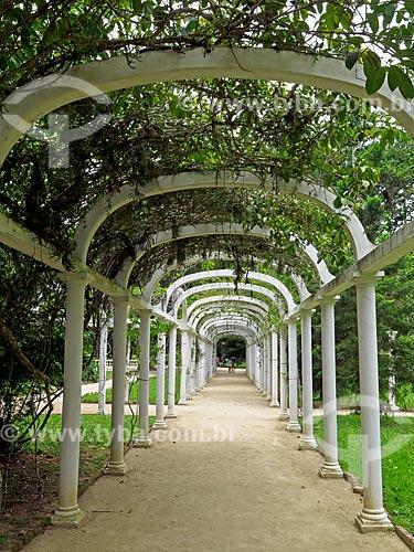 Pérgola no Jardim Botânico do Rio de Janeiro  - Rio de Janeiro - Rio de Janeiro (RJ) - Brasil
