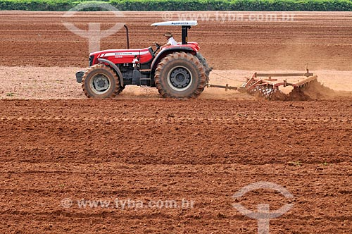 Trator arando o solo  - Mirassol - São Paulo (SP) - Brasil