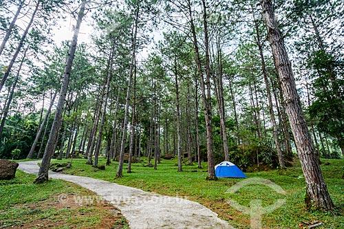 Tenda no Camping Clube do Brasil - na Área de Proteção Ambiental da Serrinha do Alambari  - Resende - Rio de Janeiro (RJ) - Brasil