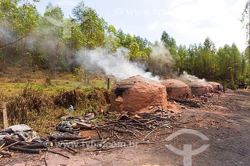 Forno usado na produção de carvão vegetal  - Guarani - Minas Gerais (MG) - Brasil