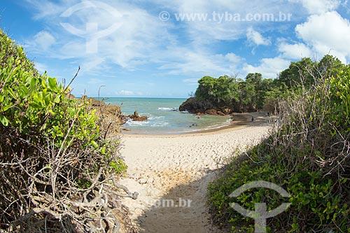 Vista da orla da Praia de Tambaba  - Conde - Paraíba (PB) - Brasil