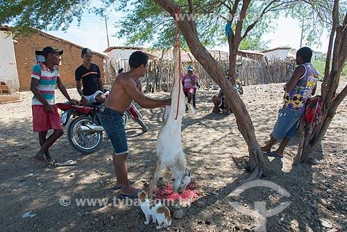 Homem desossando cabra (Capra aegagrus hircus) na Aldeia Caatinga Grande - Tribo Truká  - Cabrobó - Pernambuco (PE) - Brasil