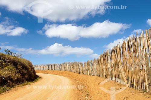Trecho de estrada de terra na zona rural da cidade de Guarani  - Guarani - Minas Gerais (MG) - Brasil