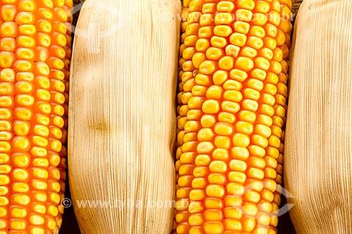 Detalhe de espiga de milho na zona rural da cidade de Guarani  - Guarani - Minas Gerais (MG) - Brasil