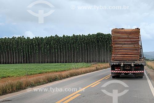 Caminhão carregando madeira na Rodovia BR-364 com plantação de soja à esquerda e plantação de eucalipto ao fundo  - Rondônia (RO) - Brasil