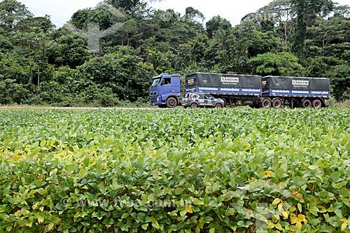 Detalhe de plantação de soja com a Rodovia BR-364 ao fundo  - Cáceres - Mato Grosso (MT) - Brasil