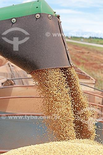 Detalhe de descarga de soja durante a colheita  - Jaciara - Mato Grosso (MT) - Brasil