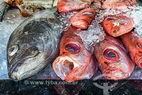 Detalhe de peixe à venda no mercado de peixes do Porto da Barra na Praia de Manguinhos  - Armação dos Búzios - Rio de Janeiro (RJ) - Brasil