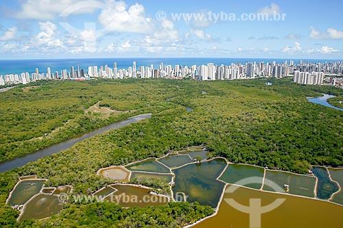 Foto aérea de criação de camarão (Carcinicultura) no Parque dos Manguezais com os prédios do bairro de Boa Vista ao fundo  - Recife - Pernambuco (PE) - Brasil
