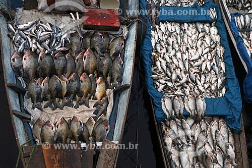 Canoas com peixes no Mercado de Pescado no porto de Manaus  - Manaus - Amazonas (AM) - Brasil