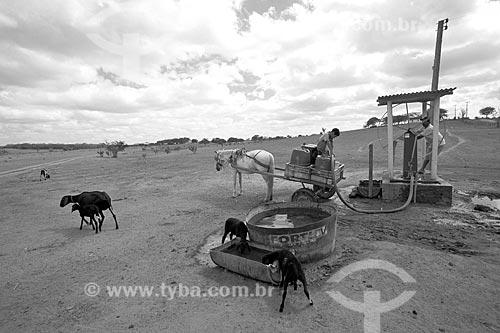 Pessoas buscando água durante o período de seca na zona rural do estado de Alagoas  - Alagoas (AL) - Brasil