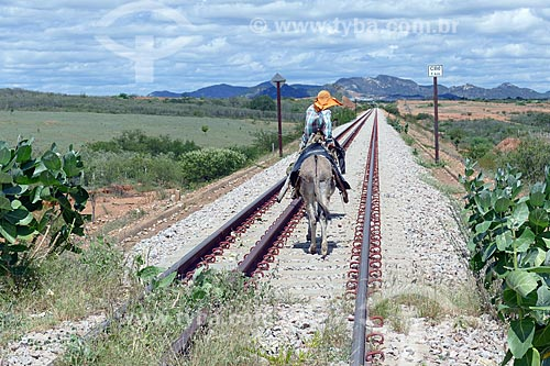 Homem montado em burro em trecho da Ferrovia Nova Transnordestina  - Salgueiro - Pernambuco (PE) - Brasil