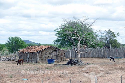 Casa de pau-a-pique na zona rural da cidade de Cabrobó  - Cabrobó - Pernambuco (PE) - Brasil