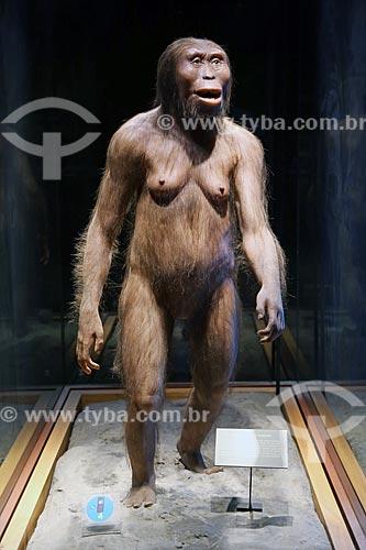 Reconstrução de um Australopithecus afarensis fêmea adulta que foi denominada Lucy - parte da coleção Introdução à Antropologia do Museo Nacional de Antropología (Museu Nacional de Antropologia do México)  - Cidade do México - Distrito Federal - México