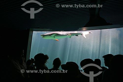 Visitantes no interior do Acuario de Veracruz (Aquário de Veracruz)  - Veracruz - Veracruz - México