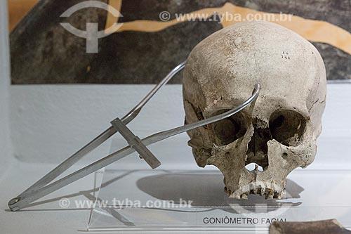 Detalhe de gôniometro facial - método de medição do crânio a fim de identificar o esqueleto de acordo com sexo, tamanho etc - no Museu Arqueológico de Sambaqui de Joinville  - Joinville - Santa Catarina (SC) - Brasil