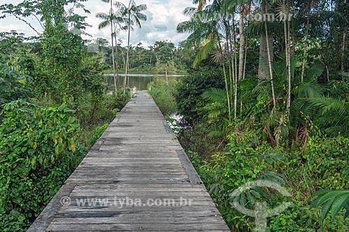 Cais da Comunidade Ribeirinha do Iratapuru na Reserva de Desenvolvimento Sustentável do Iratapuru  - Laranjal do Jari - Amapá (AP) - Brasil