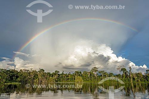 Arco-Íris no Rio Iratapuru - Reserva de Desenvolvimento Sustentável do Iratapuru  - Laranjal do Jari - Amapá (AP) - Brasil