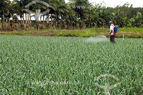 Aplicação de defensivos em plantação de alho  - Espírito Santo (ES) - Brasil