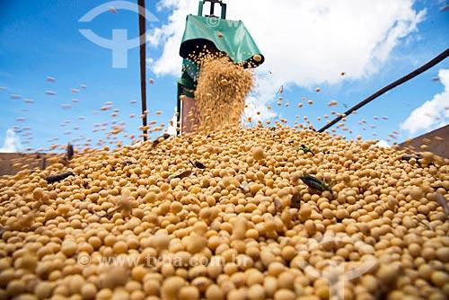 Detalhe de descarga de soja durante a colheita mecanizada  - Formosa do Rio Preto - Bahia (BA) - Brasil