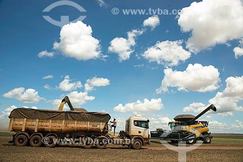 Descarga de soja durante a colheita mecanizada  - Formosa do Rio Preto - Bahia (BA) - Brasil