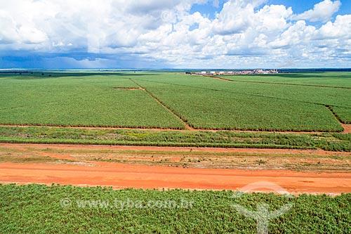 Foto aérea de plantação de cana-de-açúcar  - Pedro Afonso - Tocantins (TO) - Brasil