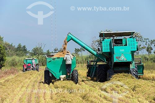 Colheita mecanizada de arroz  - Tremembé - São Paulo (SP) - Brasil