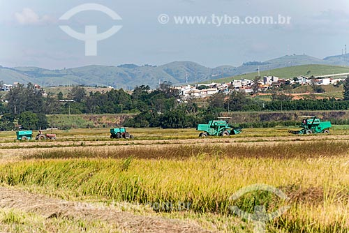 Colheita mecanizada de arroz  - Caçapava - São Paulo (SP) - Brasil