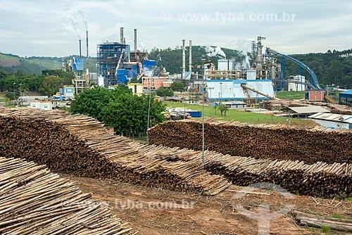 Vista da fábrica da Fibria Celulose com pilhas de troncos de árvores  - Jacareí - São Paulo (SP) - Brasil