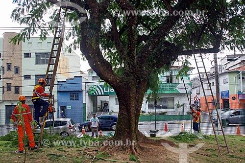Funcionários da prefeitura fazendo poda de árvore  - Jacareí - São Paulo (SP) - Brasil