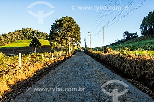 Estrada de Terra no distrito de Linha Pinhal  - Treze Tílias - Santa Catarina (SC) - Brasil