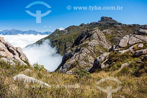 Vista de trilha no Parque Nacional de Itatiaia  - Itatiaia - Rio de Janeiro (RJ) - Brasil
