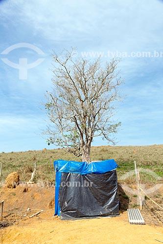 Barraca no acampamento Liberdade do Movimento dos Trabalhadores Rurais Sem Terra  - Coronel Pacheco - Minas Gerais (MG) - Brasil