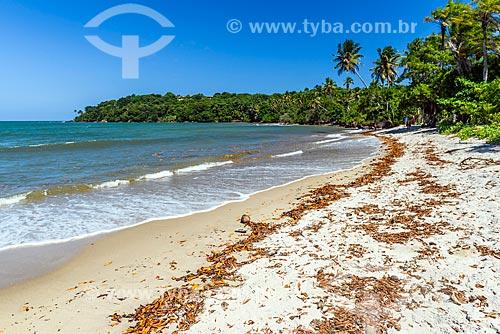 Vista da orla da Praia de Tassimirim  - Cairu - Bahia (BA) - Brasil