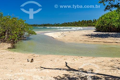Foz de rio na Praia de Bainema  - Cairu - Bahia (BA) - Brasil