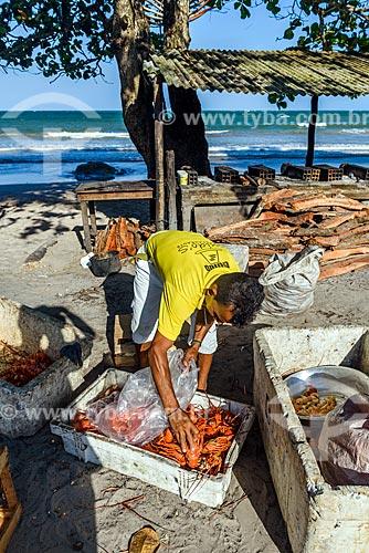 Homem separando lagosta na orla da Praia da Cueira  - Cairu - Bahia (BA) - Brasil